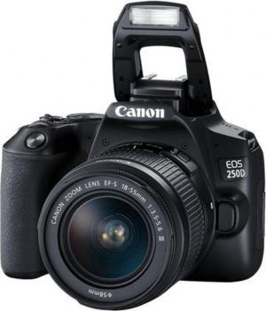 Canon EOS 250D + EF-S 18-55mm DC III